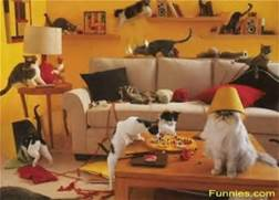 You would definitely want to ask these party-goers for a damage deposit. I hope the cat with the lampshade on his head has a designated driver.